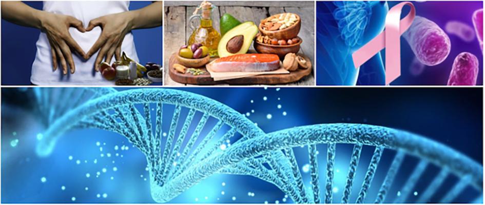 Alimentazione e microbiota nella prevenzione del tumore al seno